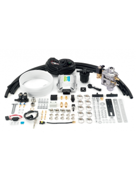 CNG motorset 3.2 Dual fast OBD 48 4-cyl Lovato