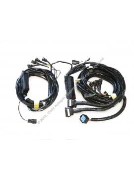 Vialle wiring loom MV3 V8 L1-1750/L2-1500 universal